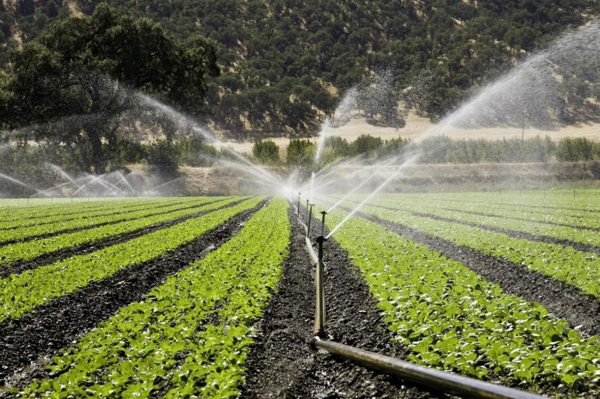 خبرنگاران 70 هکتار از اراضی کشاورزی شهرستان بروجن به سیستم های نوین آبیاری مجهز شد