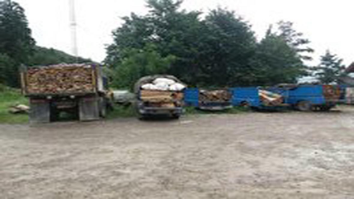 7 خودروی حامل چوب قاچاق در سوادکوه توقیف شدند
