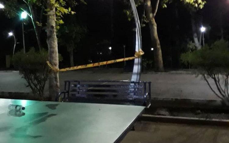 درددل پدر کودکی که در پارک لاله جان باخت؛ پاره تنم را از دست دادم